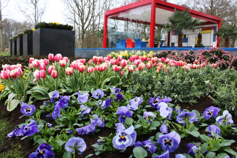 the-nat-channel-natventures-holland-amsterdam-keukenhof-garden-of-europe-flowers