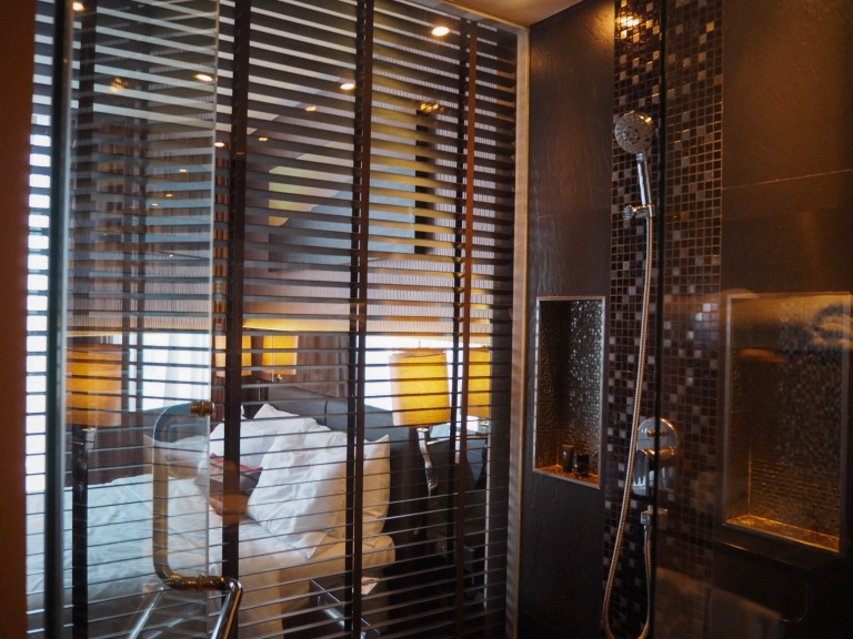 the-nat-channel-natventures-thailand-bangkok-the-continent-hotel-asok-terminal-21-bathroom.JPG