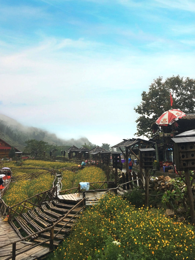 the-nat-channel-natventures-vietnam-sapa-mountain-trekking-cat-cat-village-scenic-view.JPG